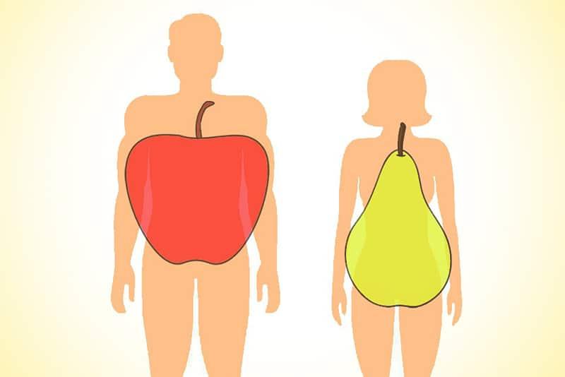 Tipovi građe tela prema taloženju masnih naslaga