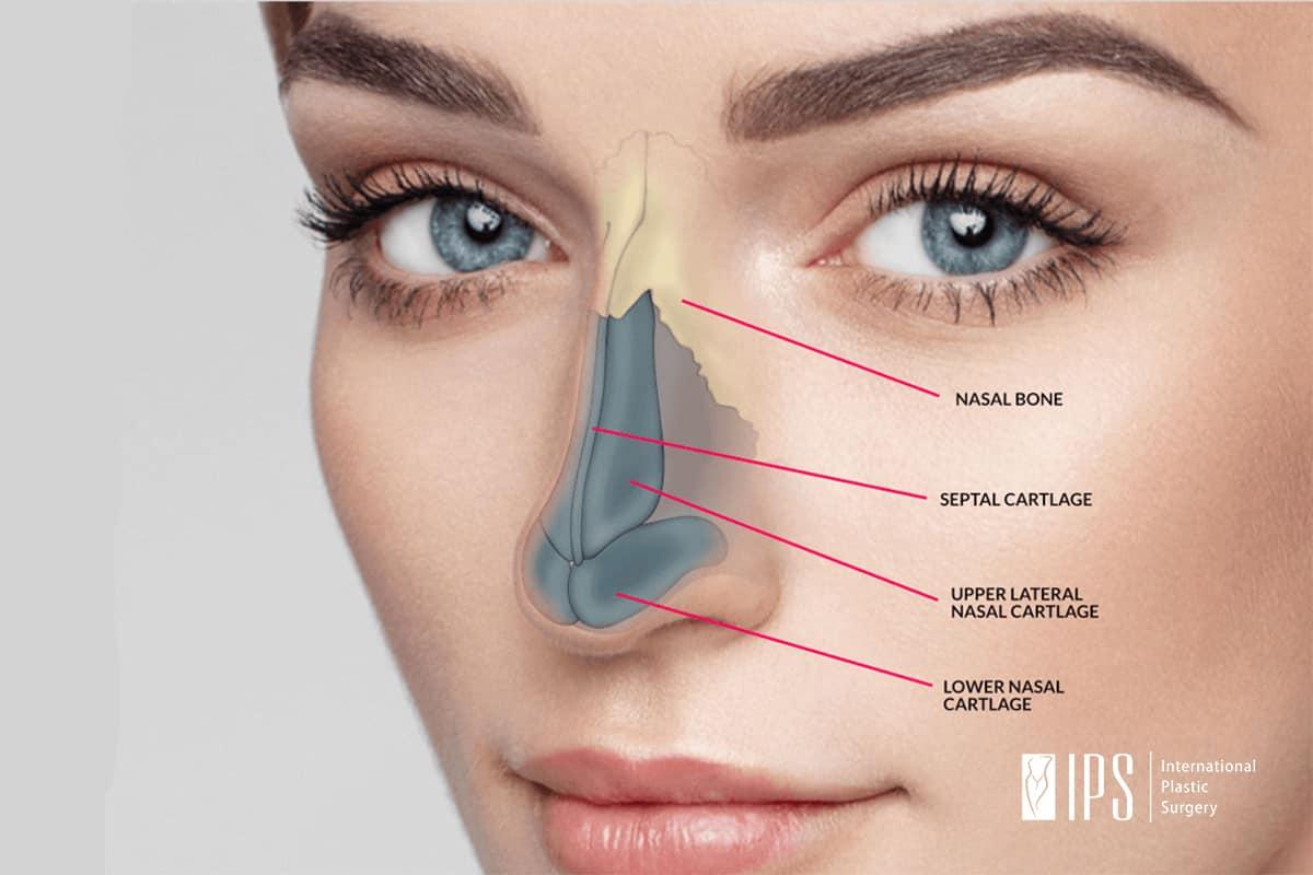 Rekonstrukcija nosa